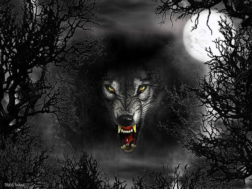 Scary Wolf Wallpapers HD