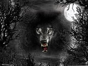 Horror Dark Wolf Wallpapers