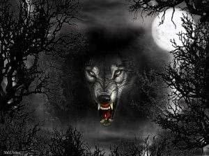 Dark Evil Wolf Wallpapers