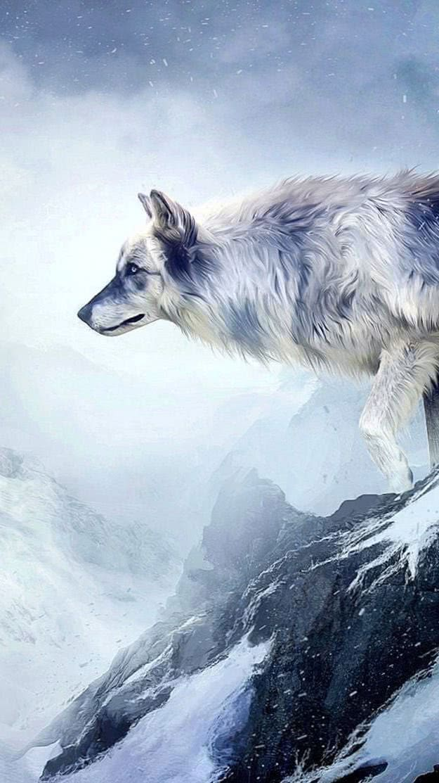 Wolf Wallpapers Vertical
