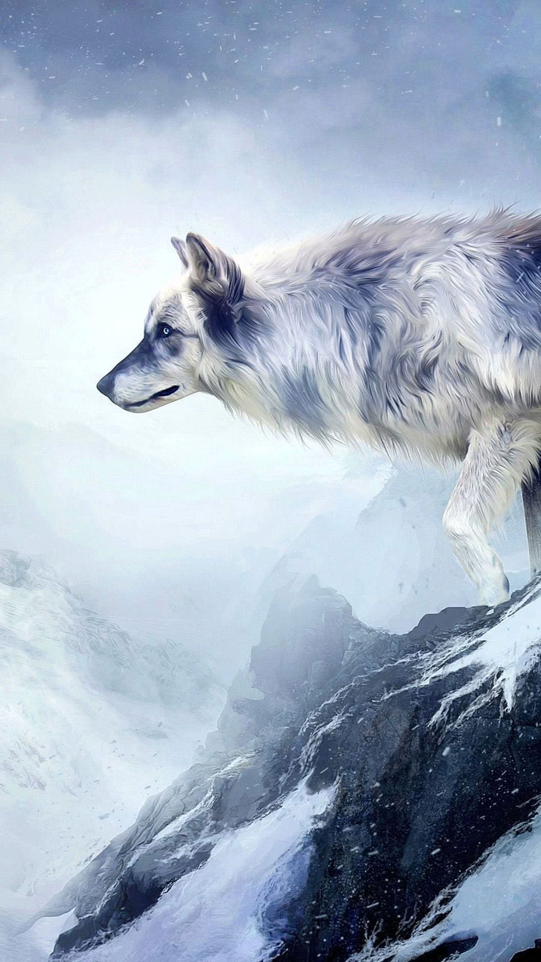 Wolf Snow HD Wallpaper