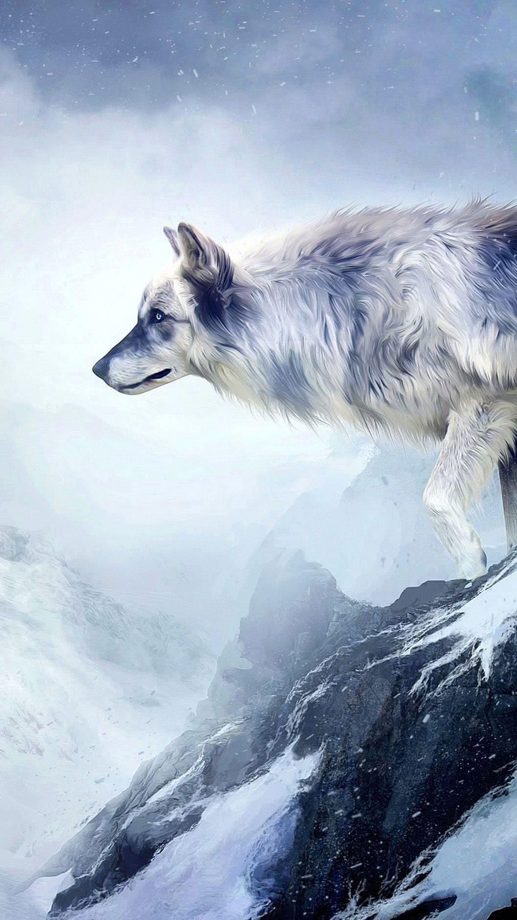Wolf Drawing HD Wallpaper