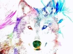 Wolf Watercolor Wallpapers