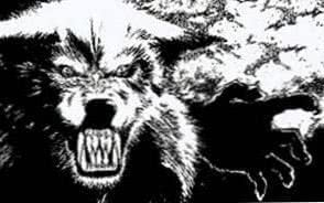 Wolf Beast Wallpapers