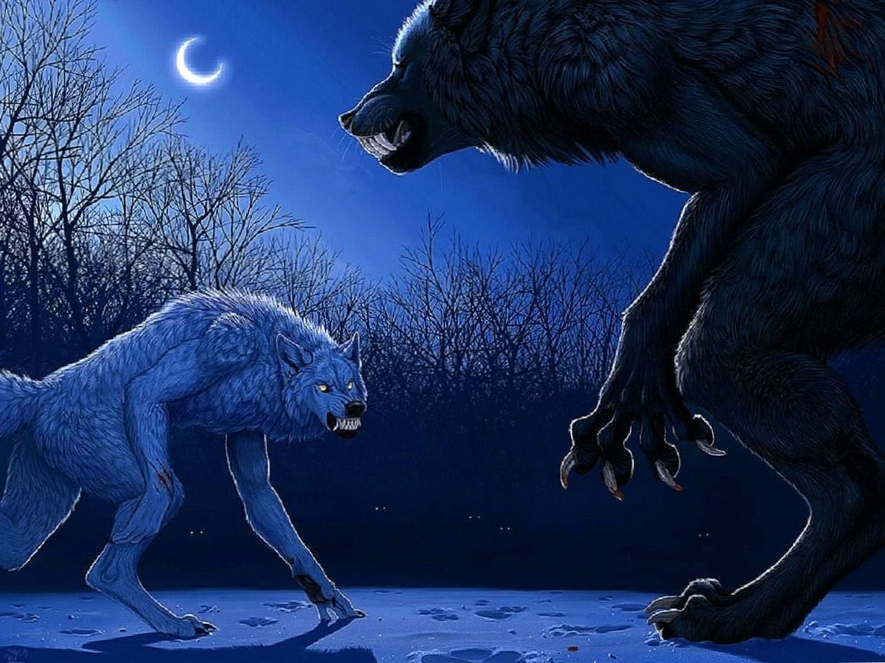 Werewolf Wallpaper 1920×1080