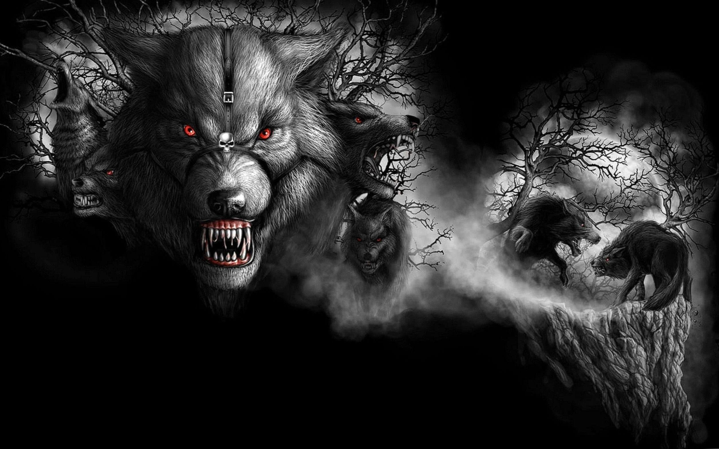 Wolf Crazy Wallpaper