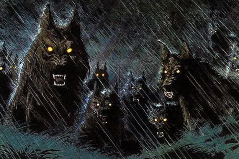 Black Werewolf HD Wallpapers