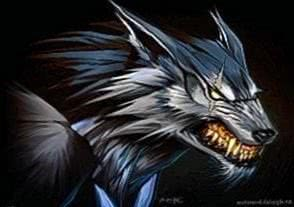 Anime Werewolf Wallpapers