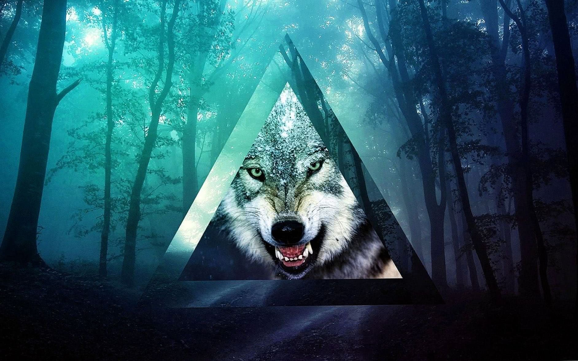 Wolf Wallpaper For Lumia