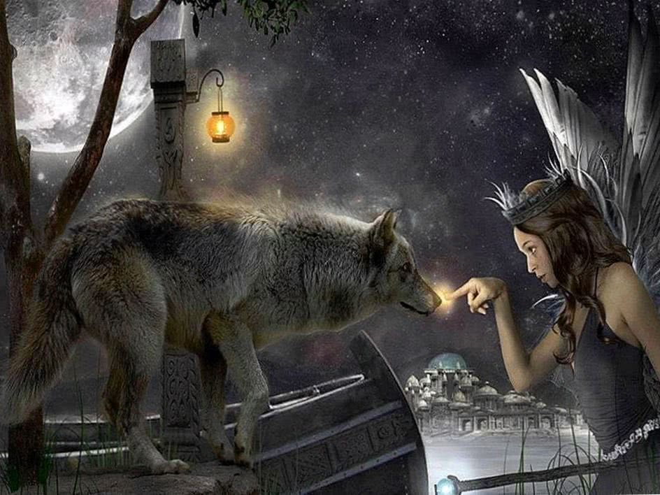 Wallpaper Wolf And Fairy