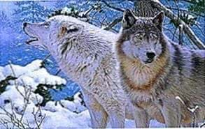 Ultra HD Wallpapers Of Wolves