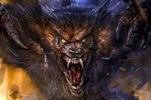 Wolf Wallpapers Beasts