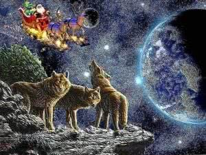 Christmas Wolf Wallpapers