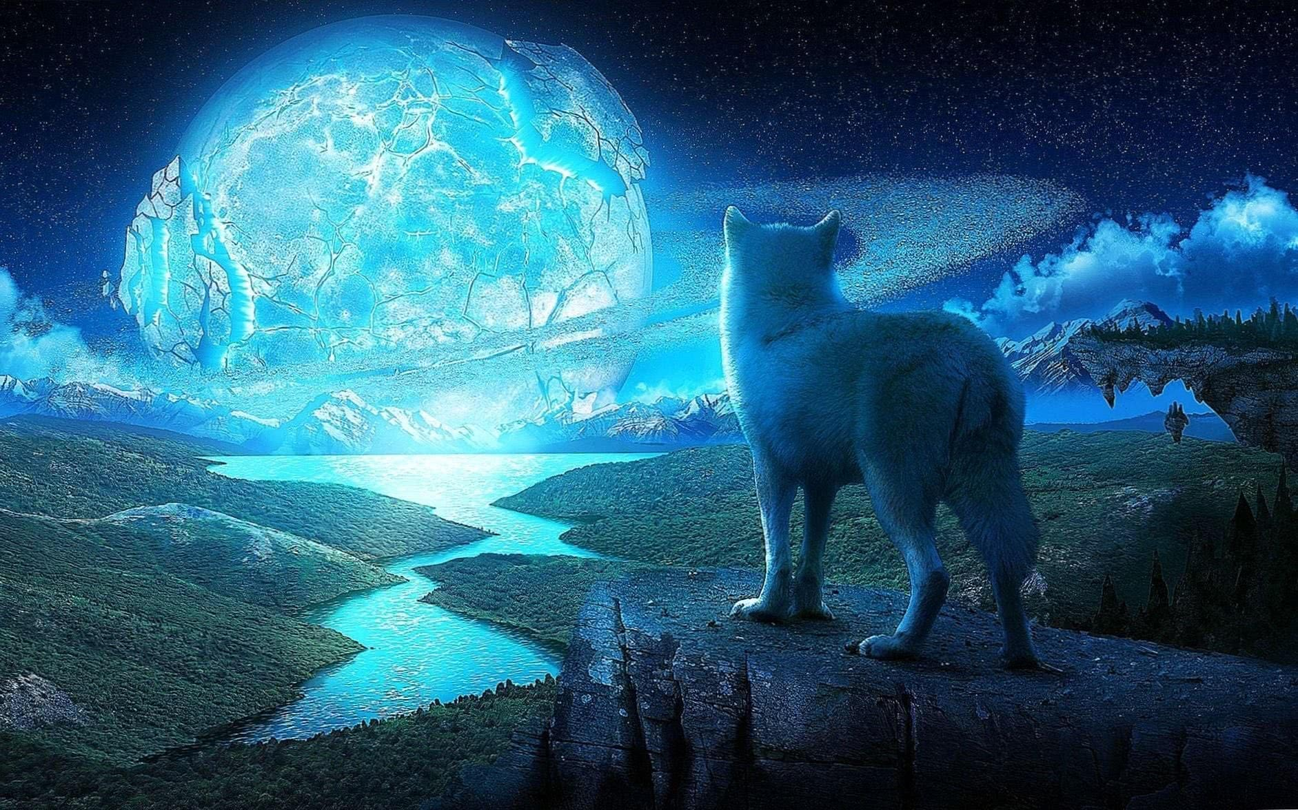 Wolf And The Ice Planet Wallpapers