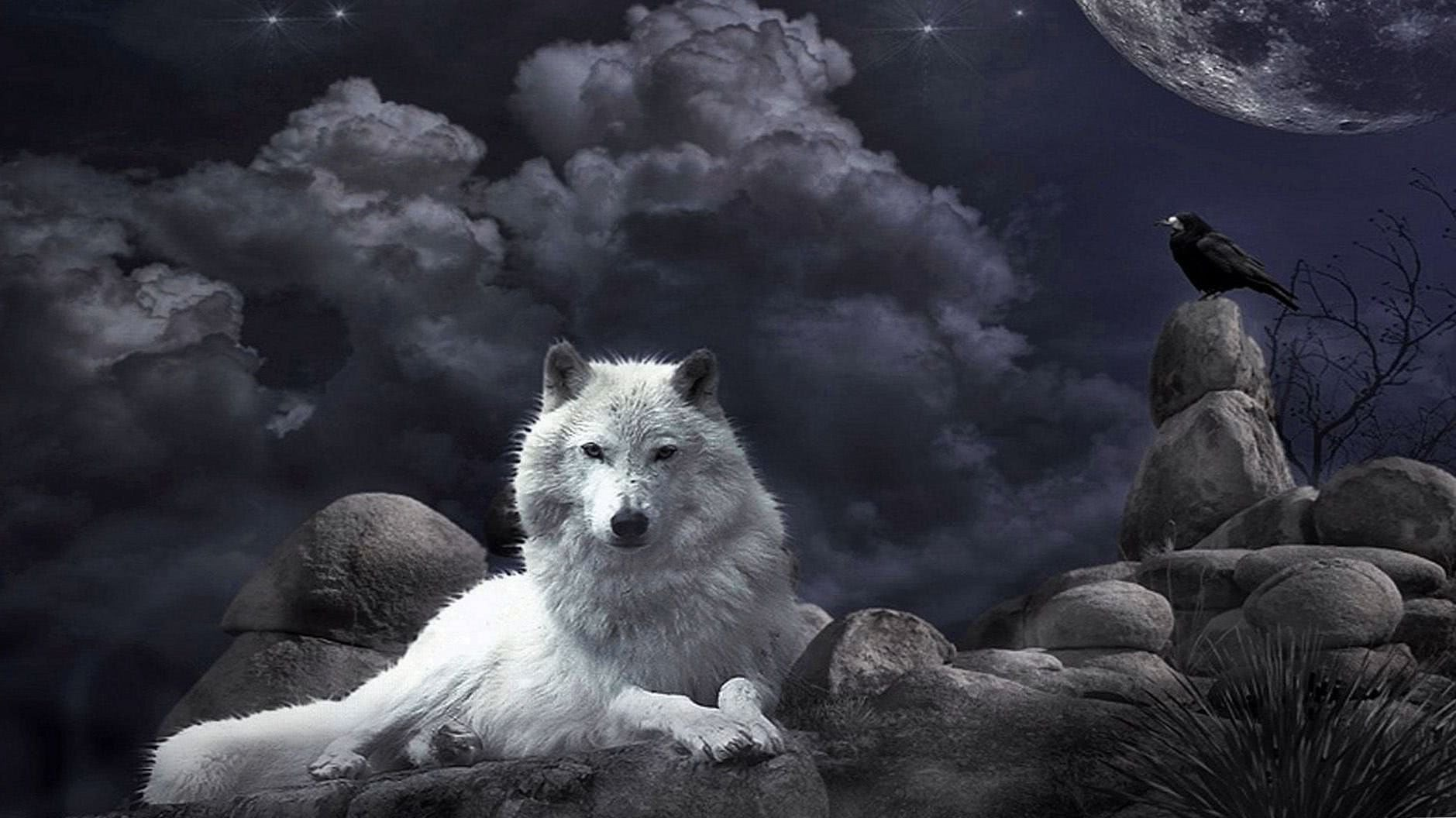 Gothic Wolf Wallpapers