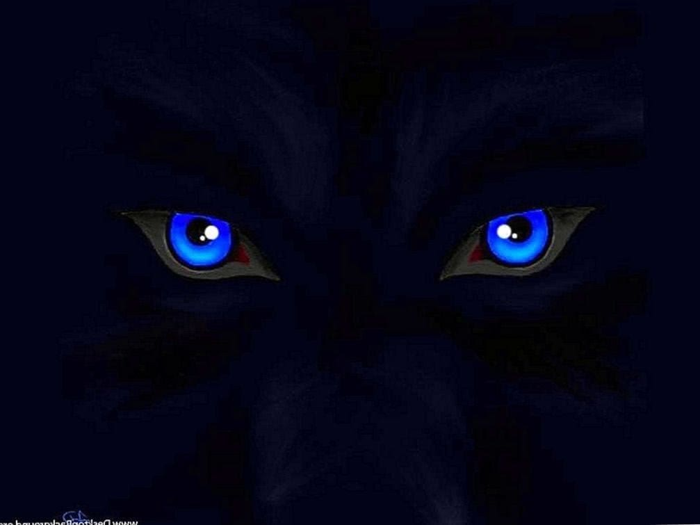 Blue Eyed Wolf Wallpapers Android