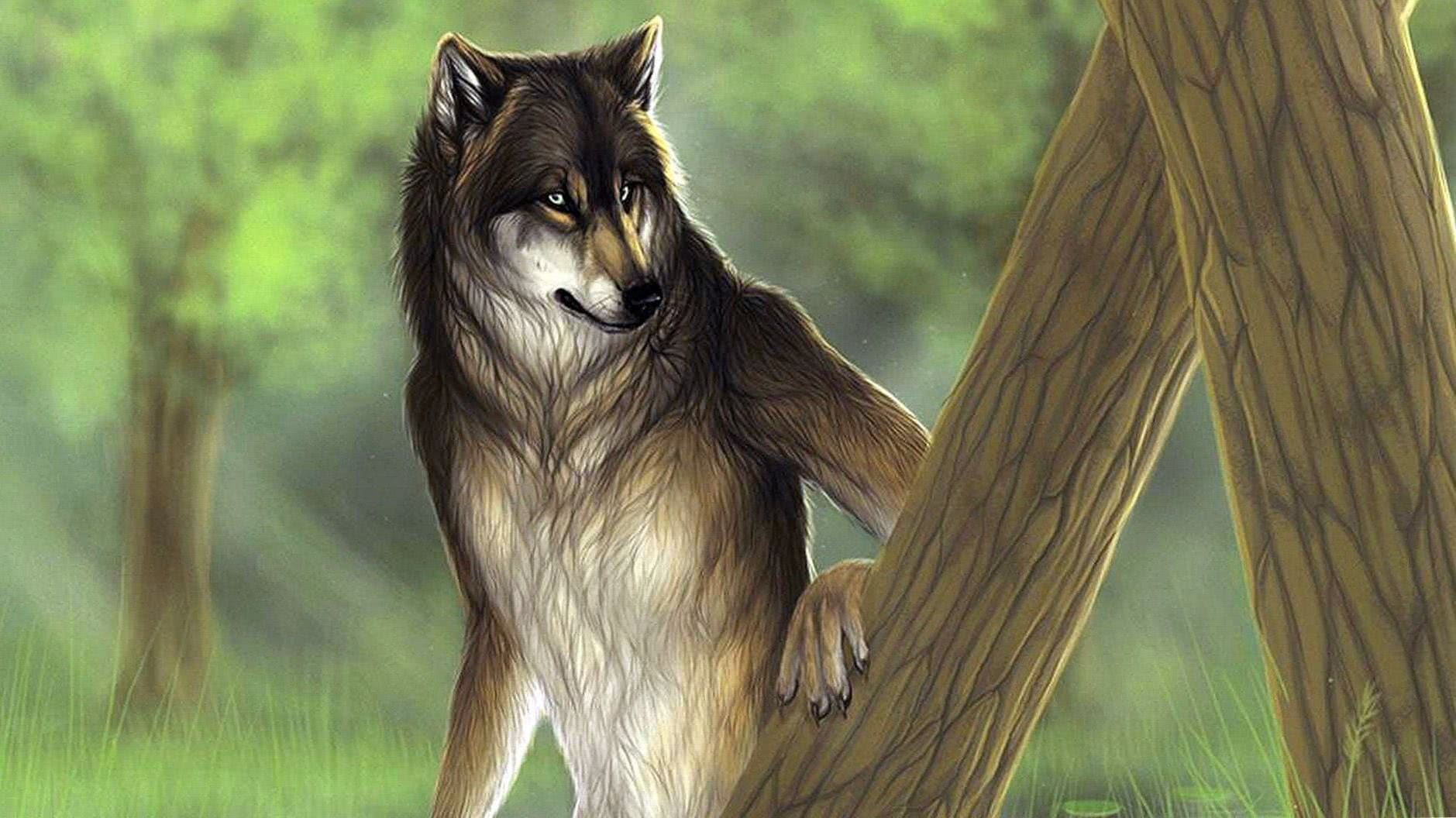 Fantasy Wolf HD Wallpapers