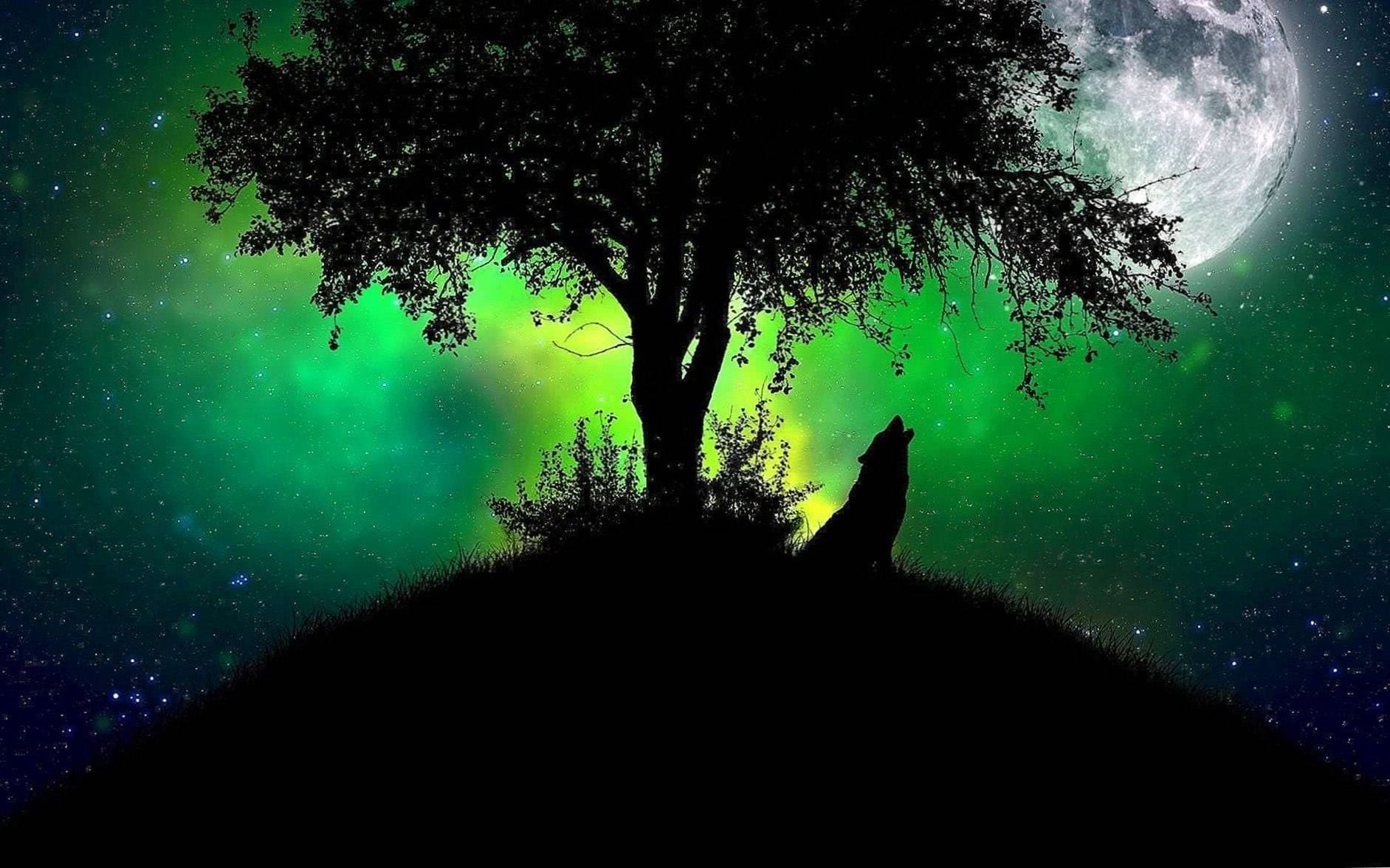 Wallpaper Moon And Wolf
