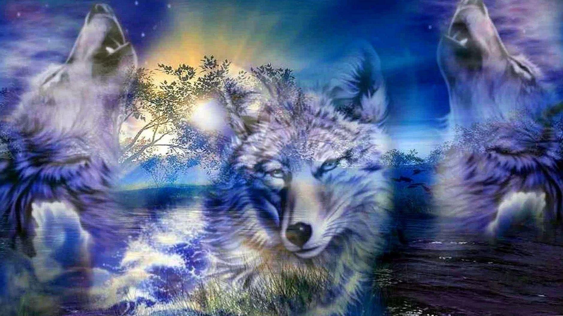 Wolf HD 3D Wallpaper