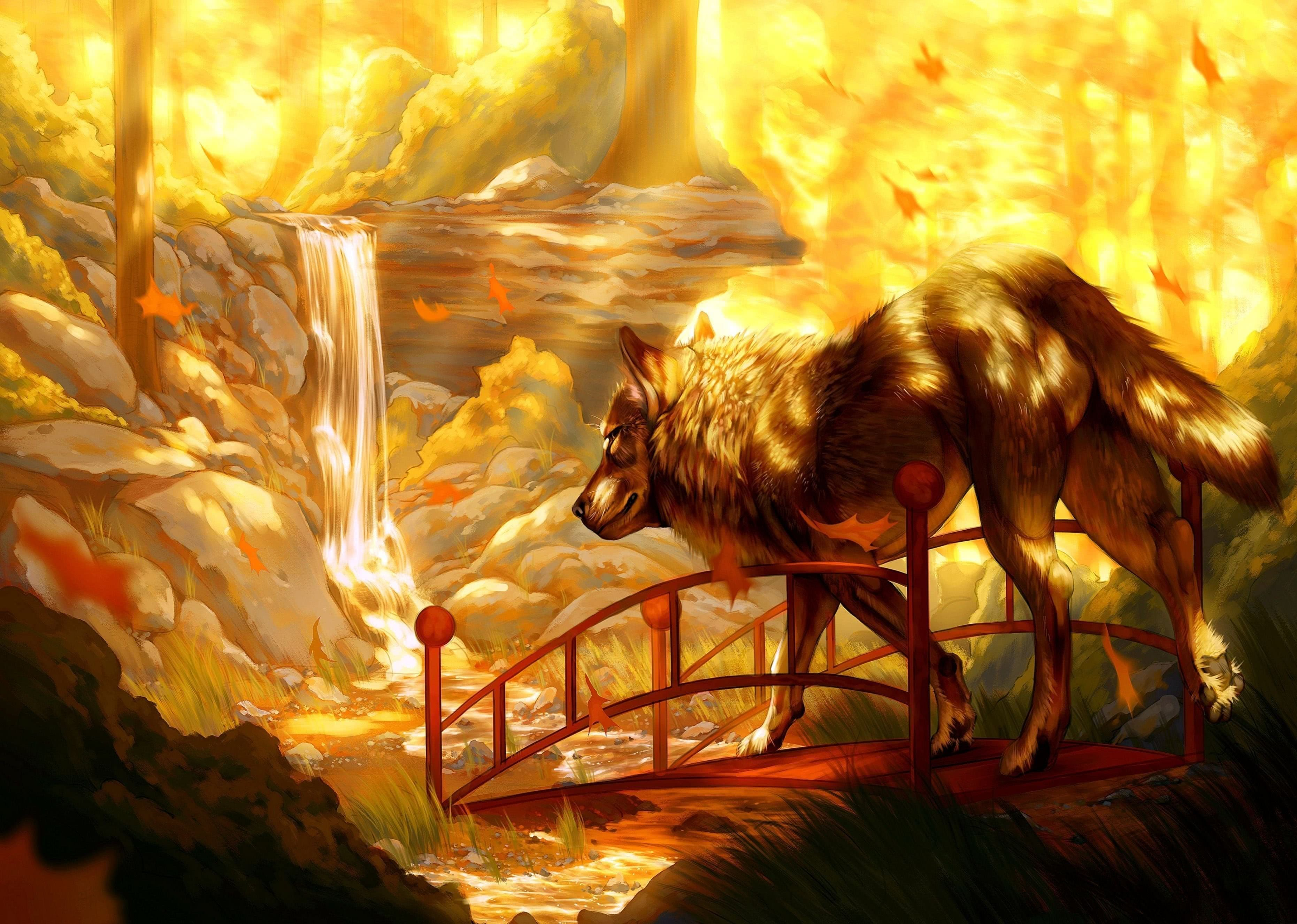 Wolf And Waterfall Wallpapers