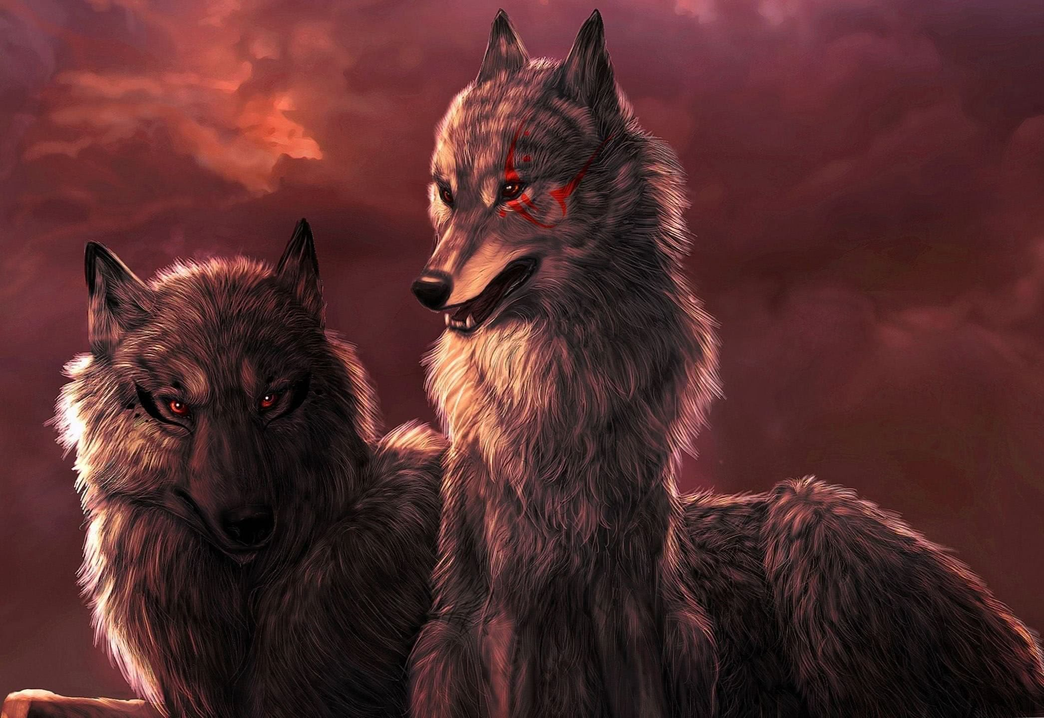 Black Wolf With Red Eyes HD Wallpaper