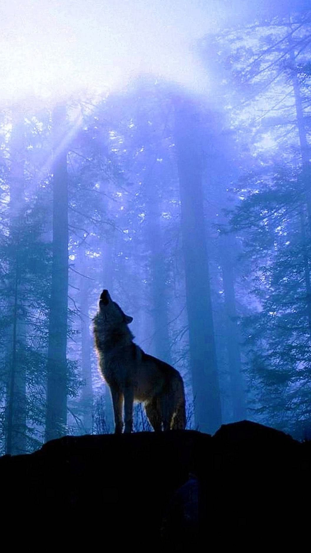 Wolf Howling At The Moon iPhone Wallpaper
