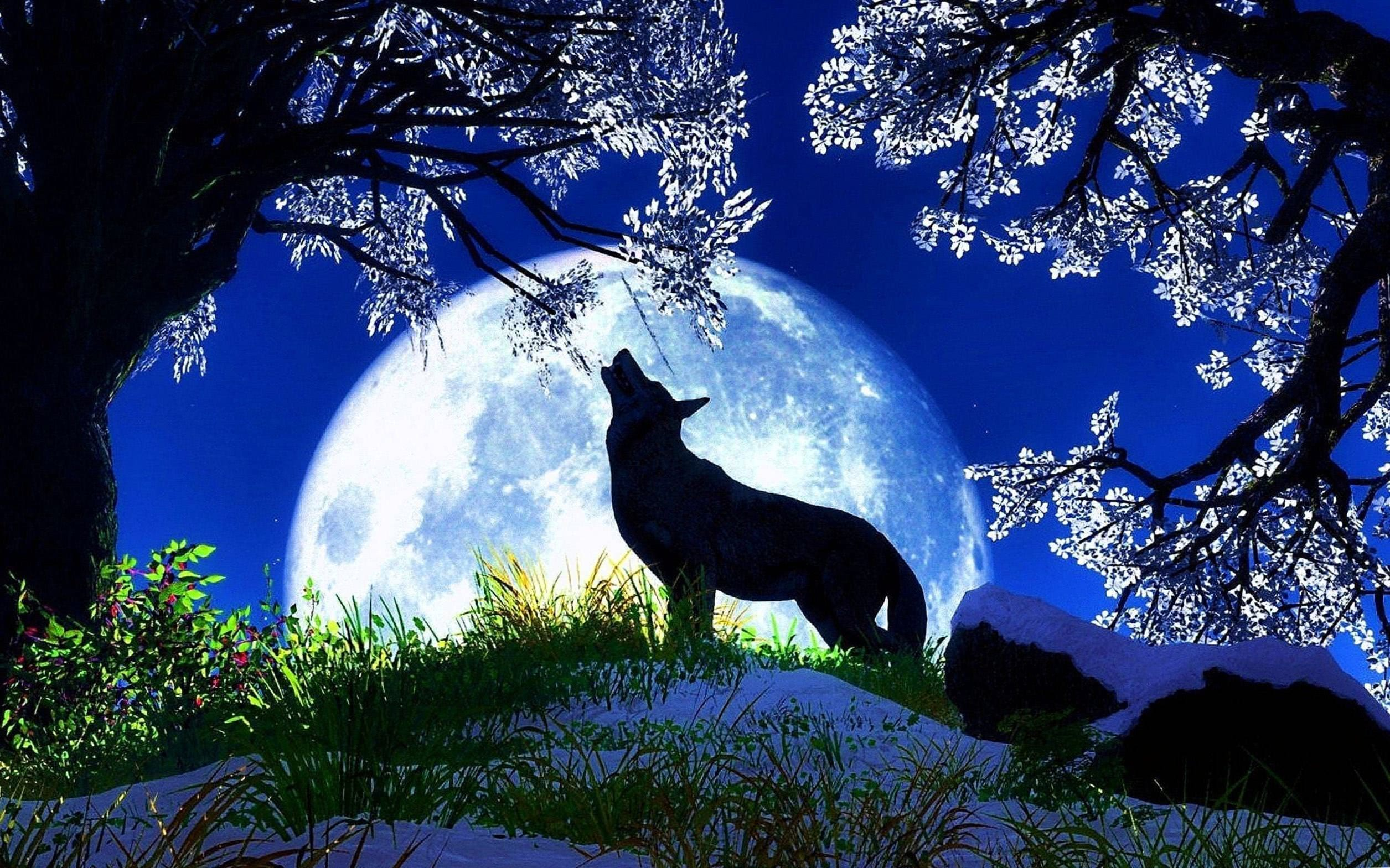 Wolf Howling At The Moon Desktop Wallpapers
