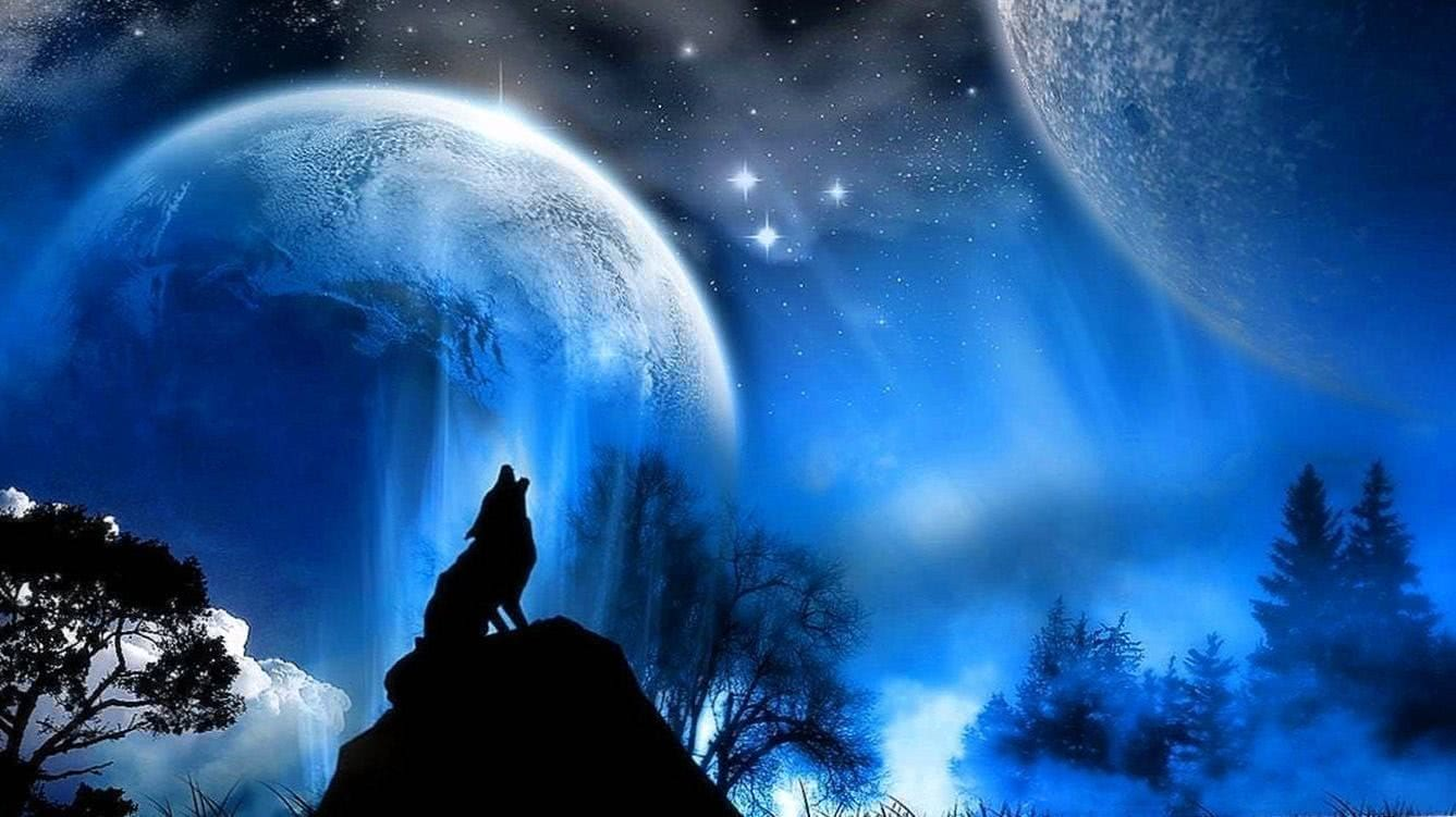 Moon With Wolf Wallpaper