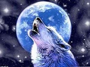 Wolf Howling At Full Moon Wallpapers
