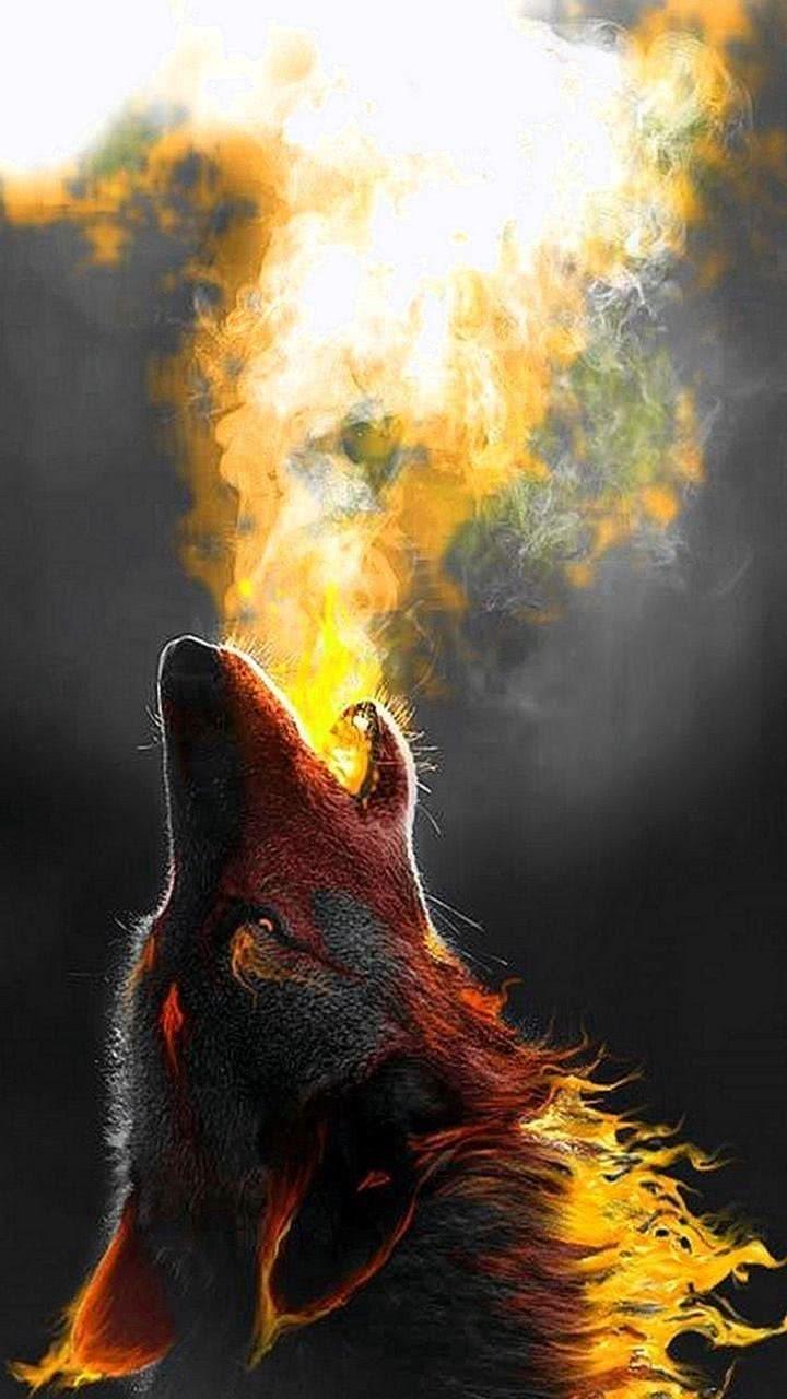 Mobile Wallpaper Fire Wolf