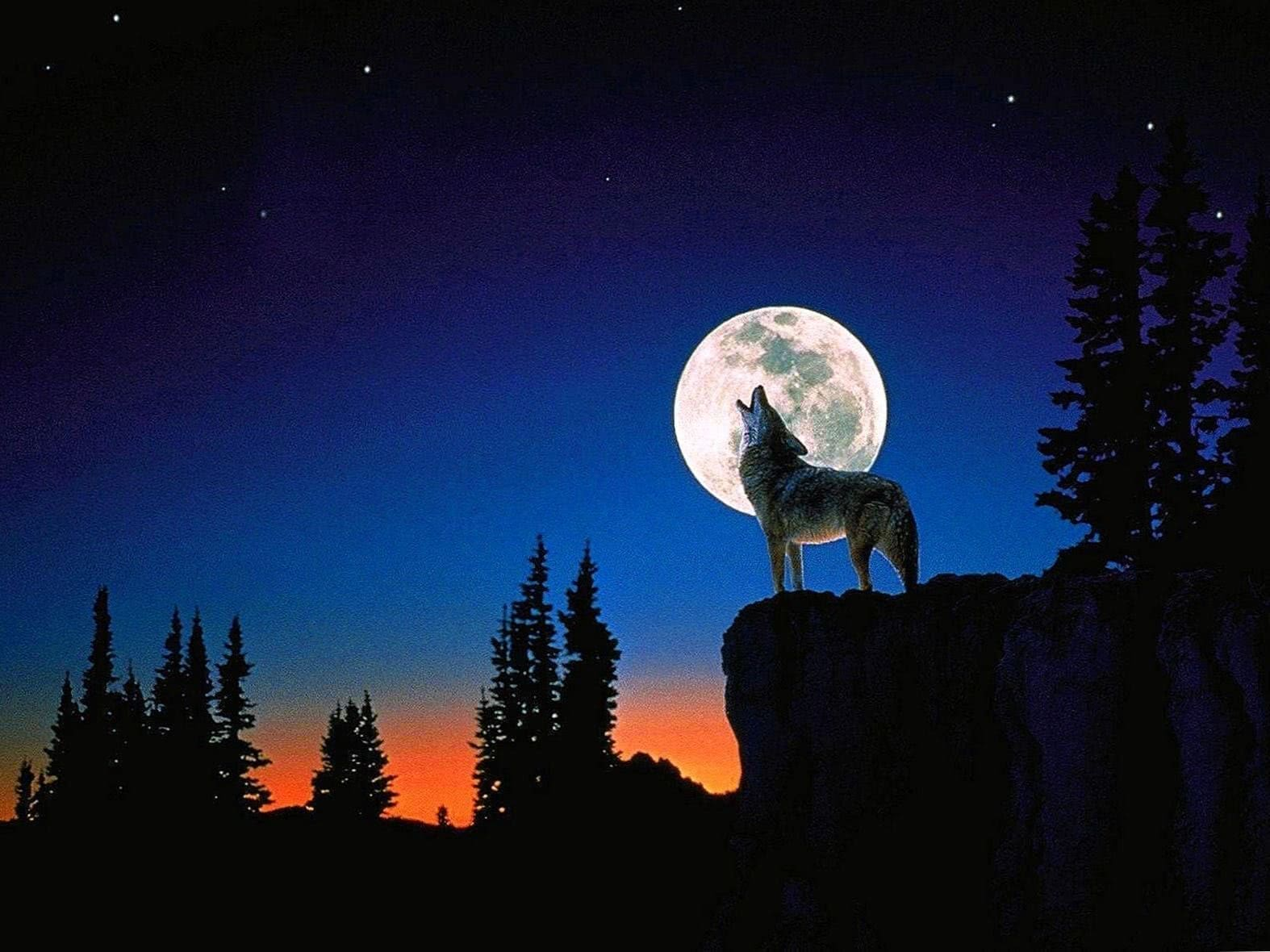 Wallpapers Moon Wolf