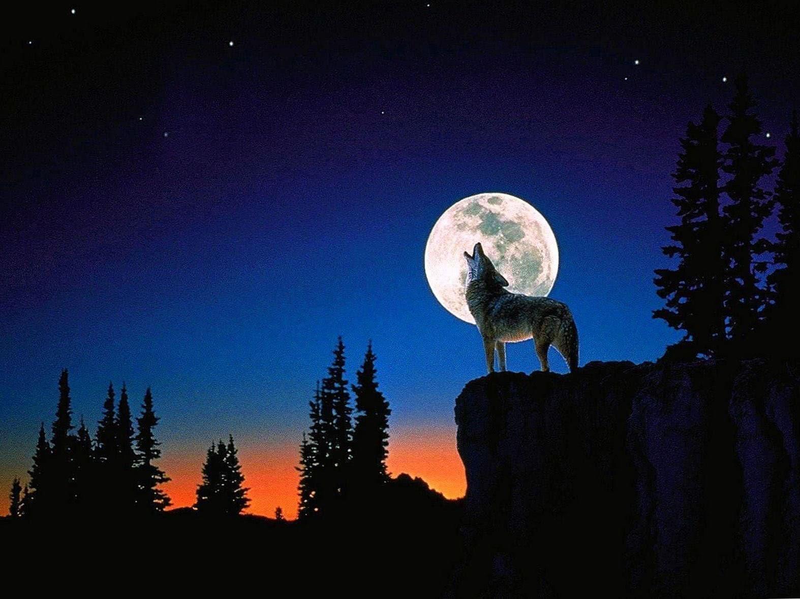 Wallpaper Moon Wolf