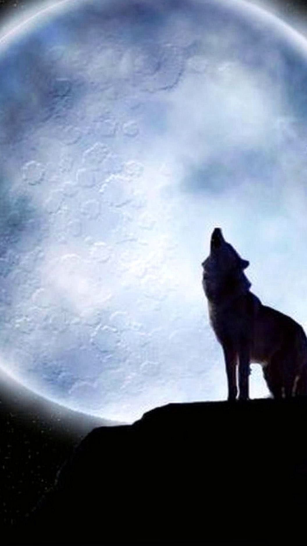 Lone Wolf Wallpapers HD iPhone