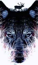 Wolf Head Wallpapers iPhone