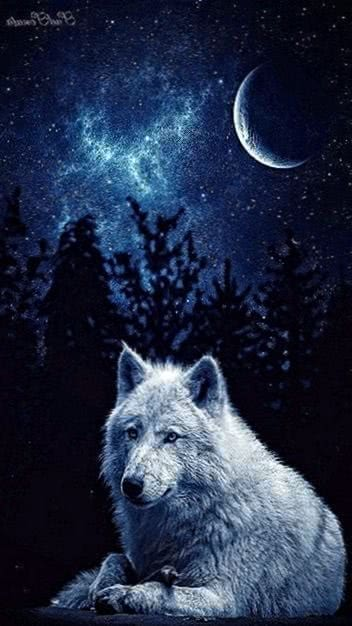Wallpapers White Wolf Cell Phone