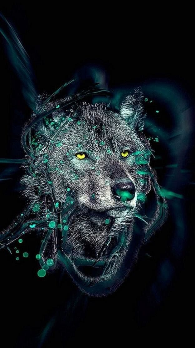 Wolf iPhone HD Wallpaper