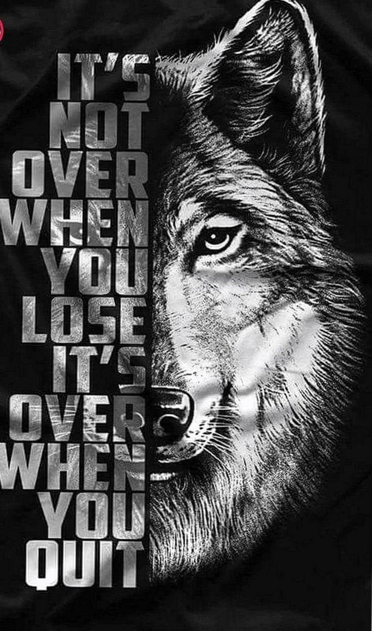 Wolf Motivational Wallpapers
