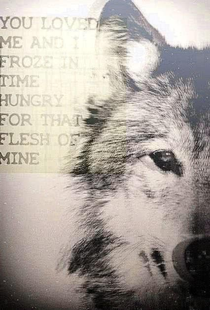 Wolf Quotes iPhone Wallpaper