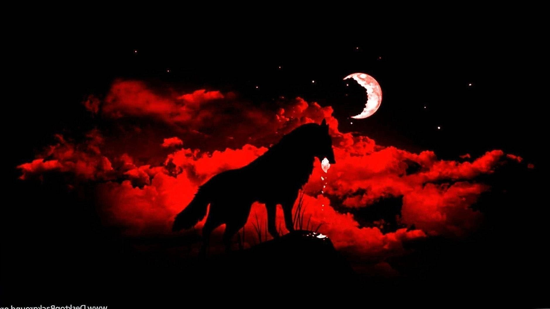 Blood Wolf Wallpaper HD