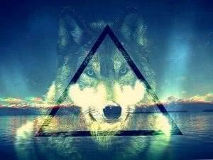 Wallpapers Wolf Triangle
