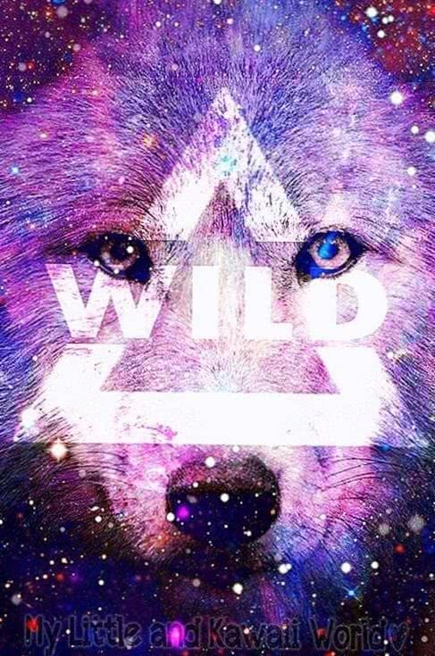 Galaxy Wolf Phone Wallpaper