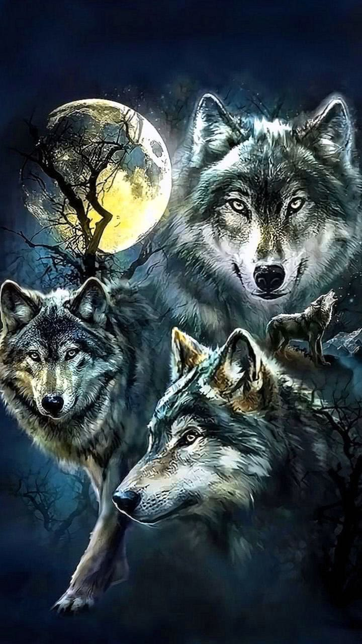Wallpaper Wolves And