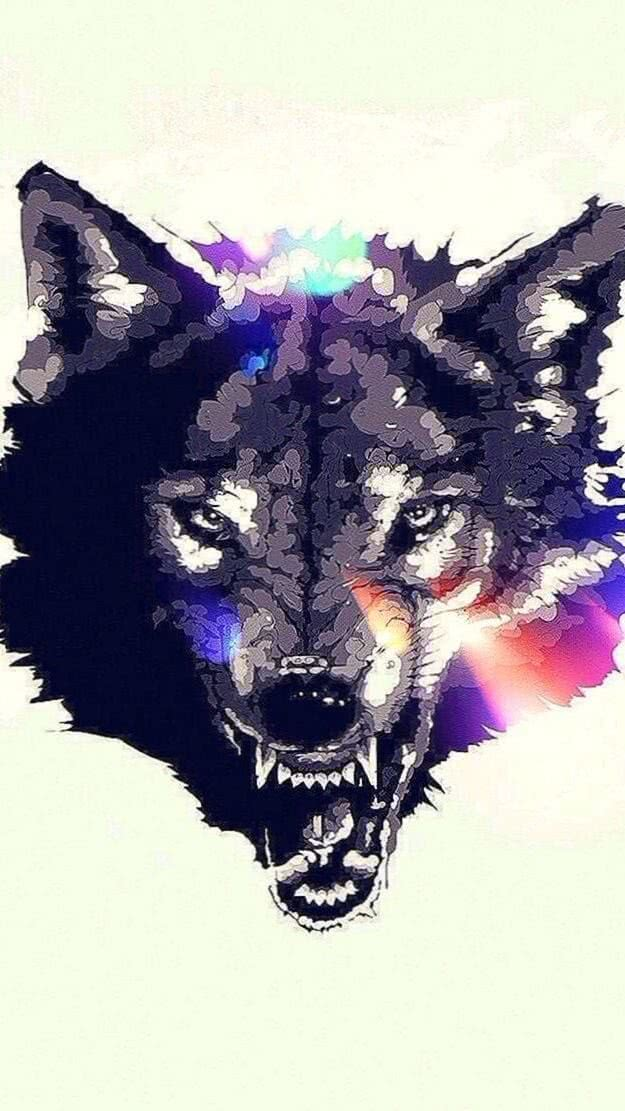 Grey Wolf iPhone 5S Wallpapers
