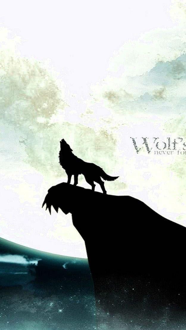Wolf Wallpaper HD iPhone 5