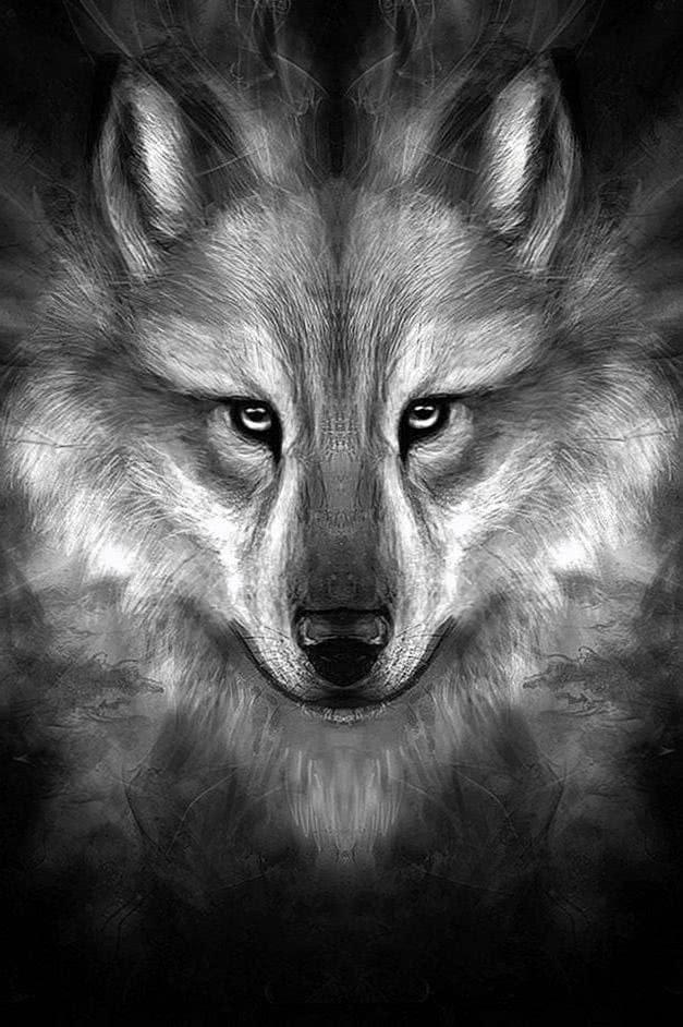 Black Wolf Face Wallpaper HD