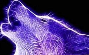 Electric Wolf Wallpapers