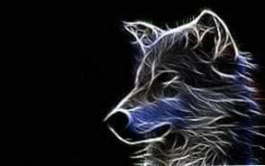 Wallpapers Art Wolf