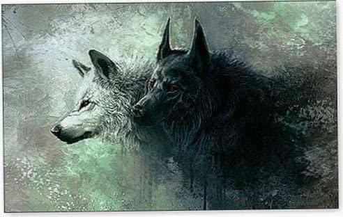 Wallpaper Windows Wolf