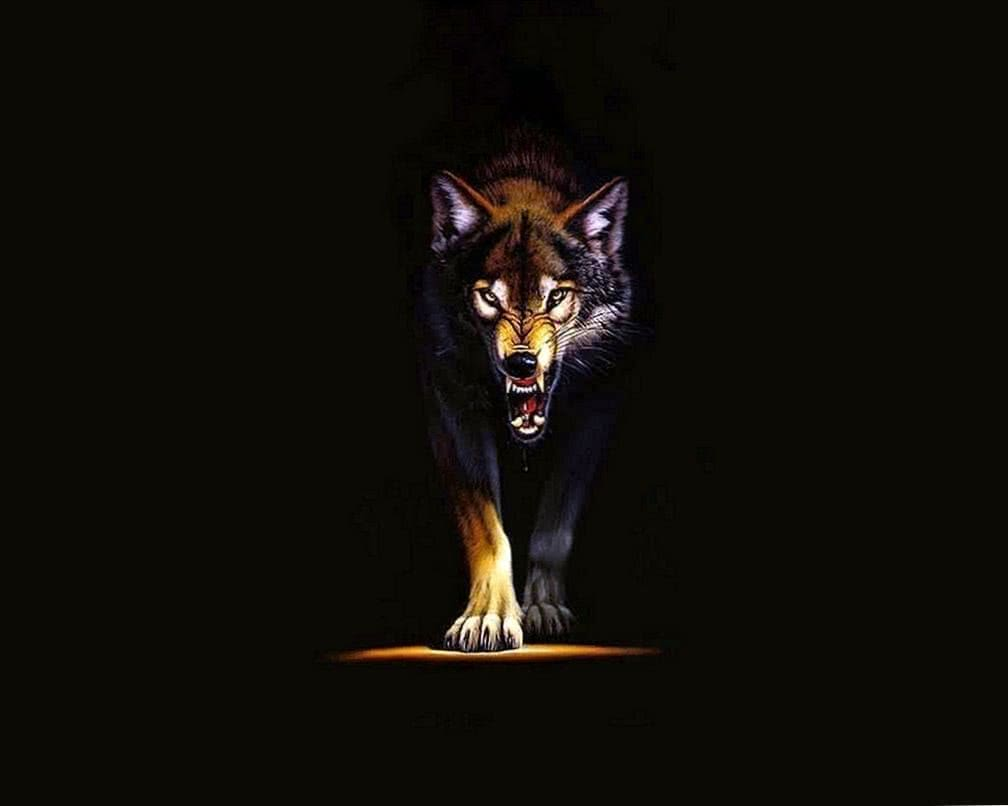 Angry Wolf Wallpaper 4K iPhone