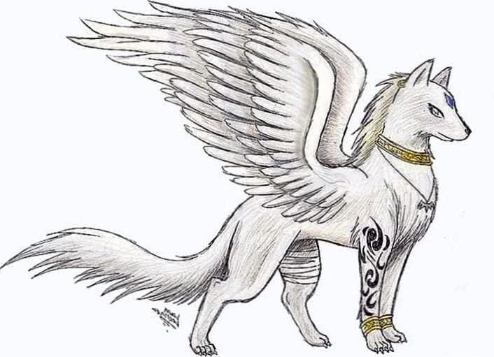 Cute Wolf Wallpaper Drawing